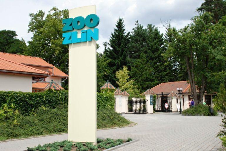 foto: zoozlin.eu